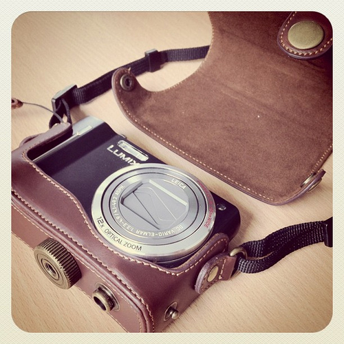 New Lumix in old case