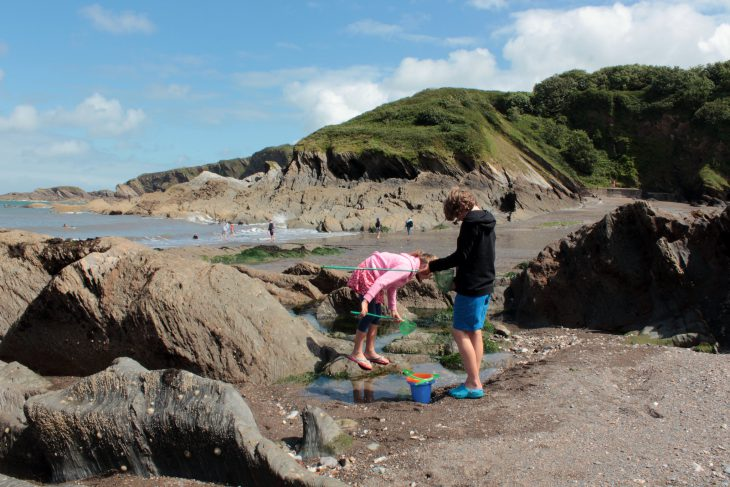 Rock Pooling at Hele Bay